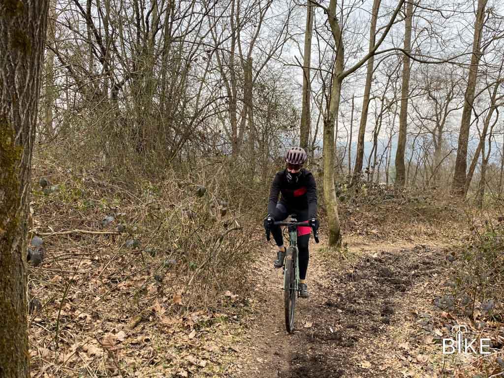 in gravel bike nei boschi della brughiera orsenighese