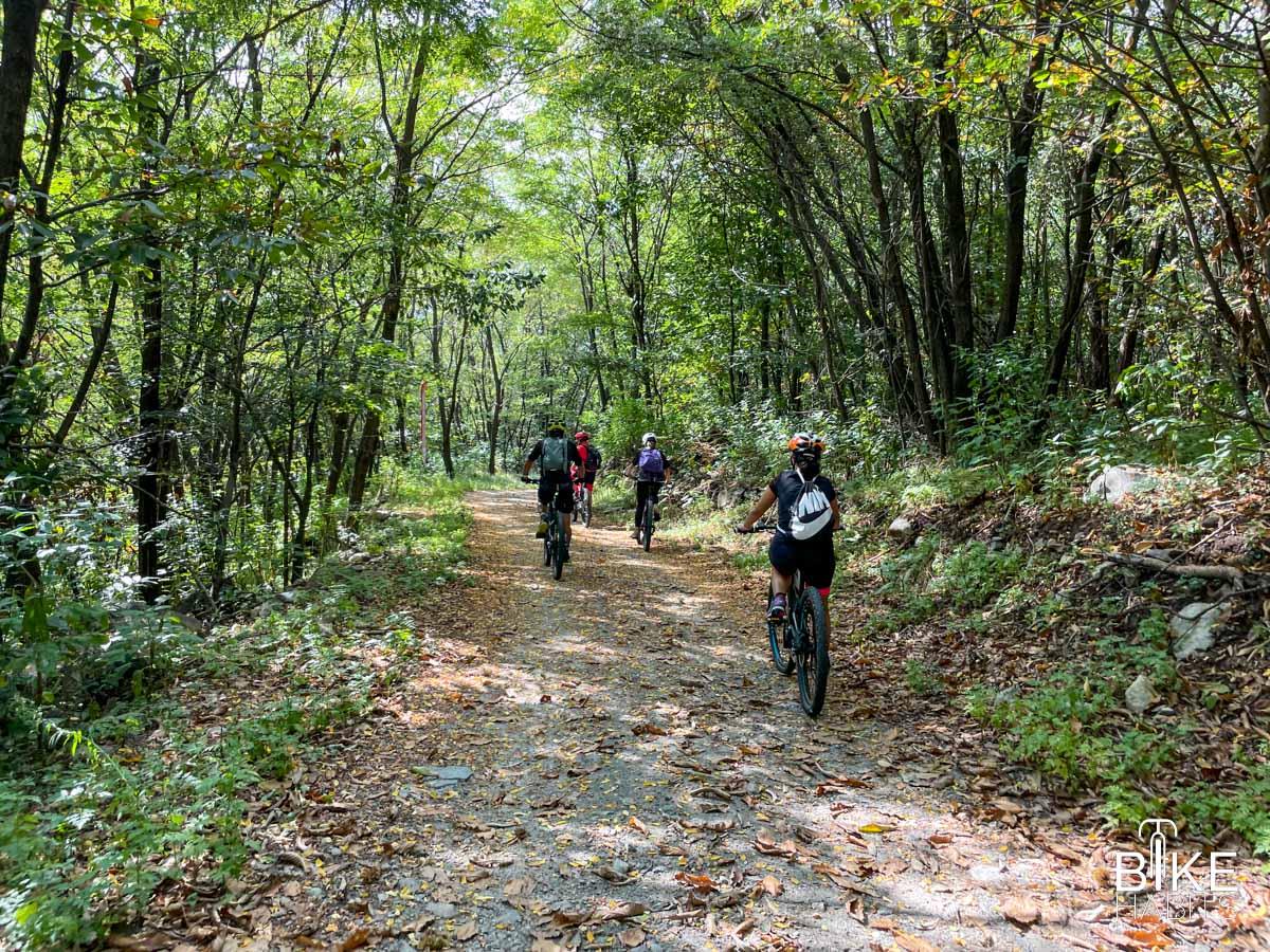 Nei boschi del versante retico in ebike - Valtellina Ebike Festival 2021